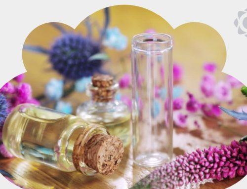 Poder das essências na Aromaterapia: saiba como renovar a energia dos ambientes com notas aromáticas