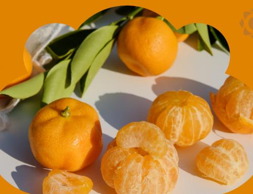 3 notas de frutas que fazem sucesso na perfumaria